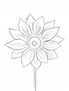 risuem-cvetok-8