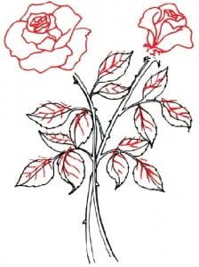 risuem-flowers-4