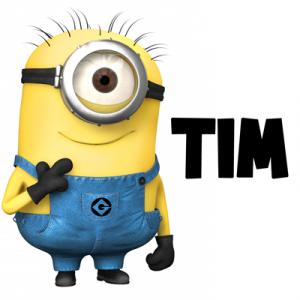 Миньон Тим