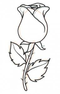 risuem-rose-legko-08