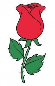 risuem-rose-legko-10