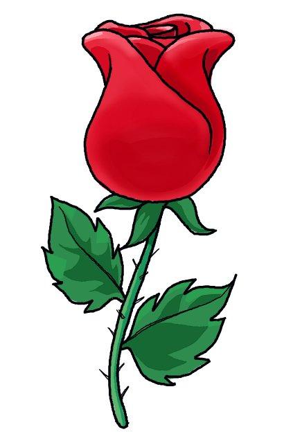 картинки розы рисунки