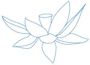 Как нарисовать цветок лотоса