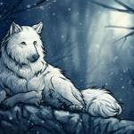 Как красиво нарисовать волка карандашом поэтапно