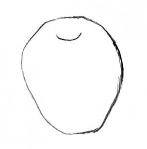 как рисовать яблоко карандашом