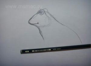 как рисовать лягушку царевну