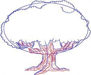 как нарисовать дуб карандашом