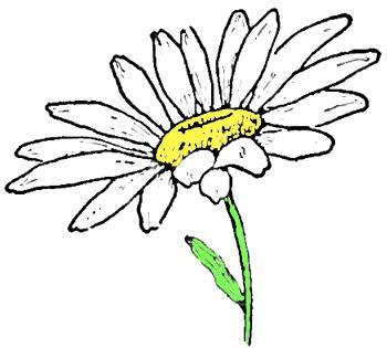 Как правильно рисовать листок