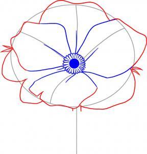 как нарисовать Аленький цветочек карандашом