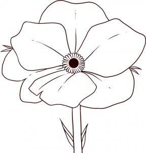 как рисовать Аленький цветочек поэтапно