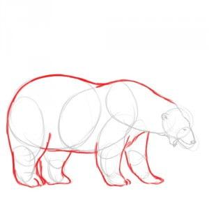 как нарисовать белого медведя карандашом